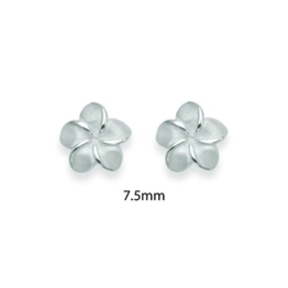 Sterling Silber 925 Frangipani Blumen Ohrstecker Ohrringe. Größe: 8mm. Geshenkbox. 5165